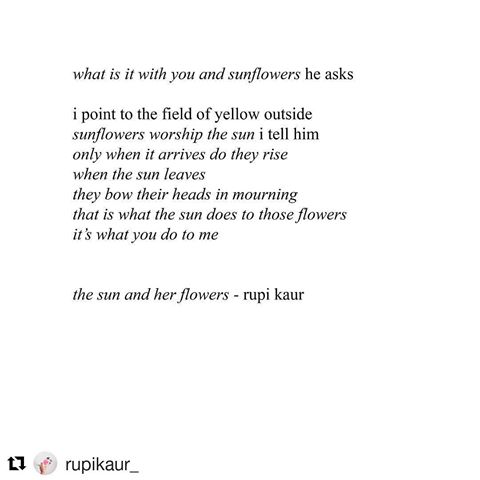 Image result for rupi kaur what is it with you and sunflowers