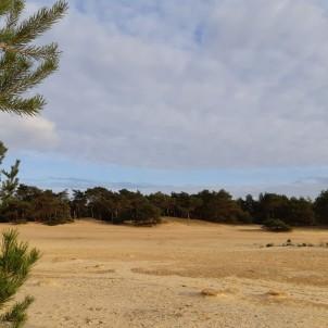 woestijn2